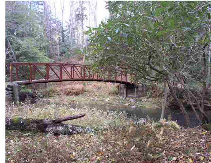 Homes And Land For Sale In Randolph County Wv
